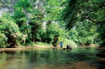 Green Andaman Travel