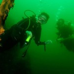 Divers check out an old tree in Khao Sok Lake Thailand