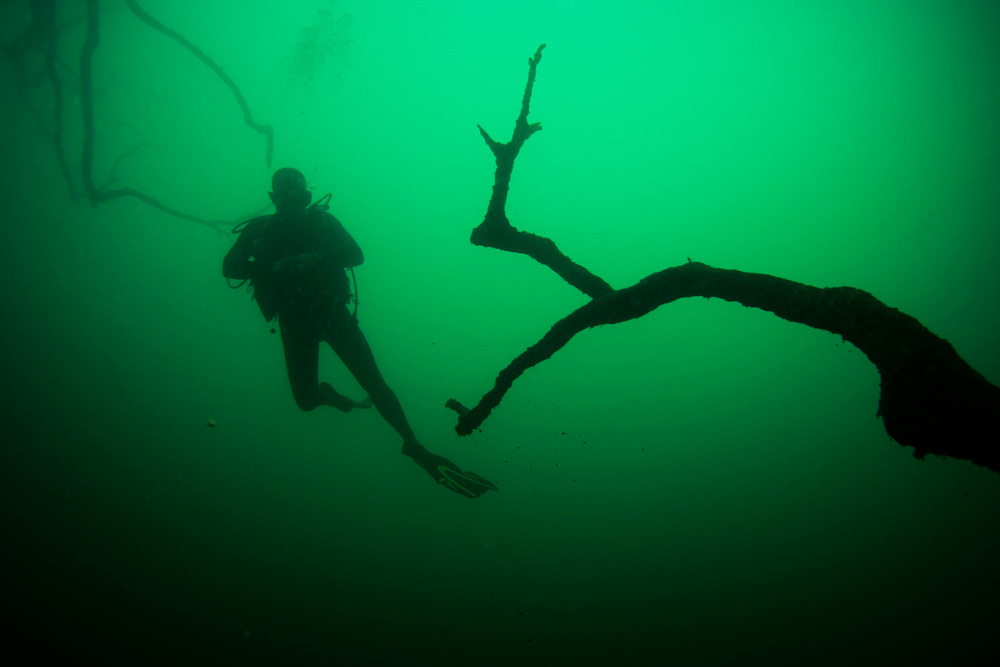 Diver and old dead tree in Khao Sok Lake Thailand