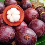 Fresh open mangosteen from Khao Lak Thailand