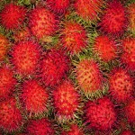 Rambutan fruit from Khao Lak