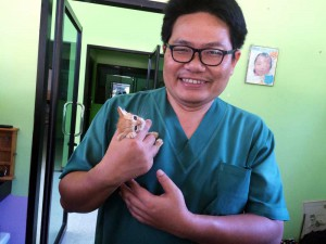 dr-sam-holds-kitten